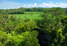 Utsikt från Bambu Indah, Ubud Bali