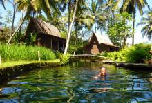 Anki simmar i poolen vid Bambu Indah, Ubud Bali