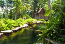 Från trappan till Padi House, Bambu Indah, Ubud Bali