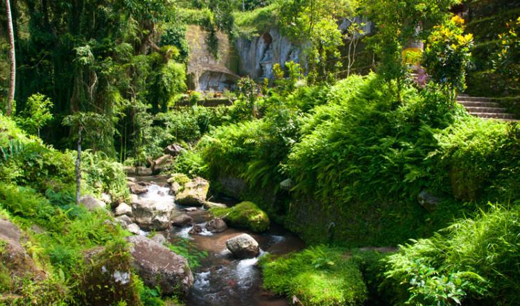 Grönska vid Pakrisan floden, Gunung Kawi Tampaksiring