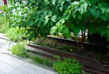 Rester av gammal tågräls bland grönska i High Line Park, New York