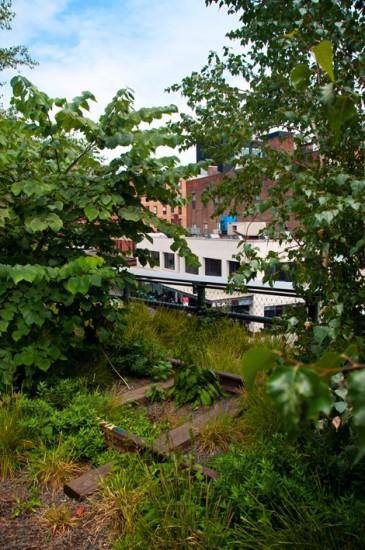 Gamla järnvägsspår vid High Line, New York
