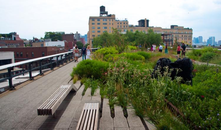 High Line Park med utsikt över omgivningarna, NYC