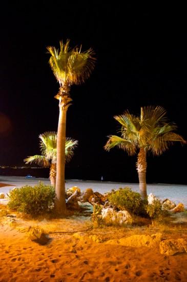 Nattvy - palmer på stranden, Sabinillas