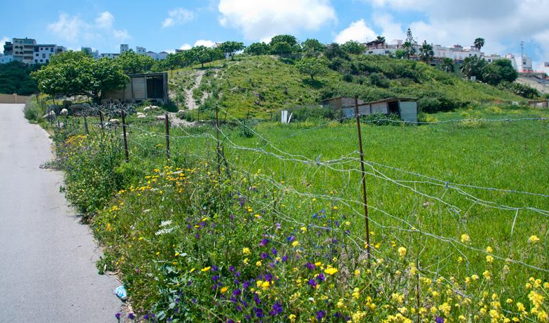Manilva landskap med Monte Viñas i bakgrunden