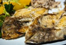 Dorada fiskrätt på MaduBar Fusion i Estepona