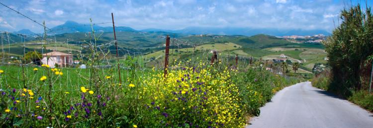 Reseskildring från ett blomstrande Andalusien i Spanien, Maj 2013