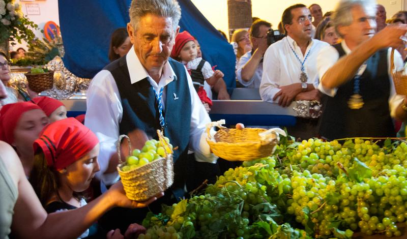 Tävling om bästa vindruvsklasen, Fiesta de la Vendimia, Manilva