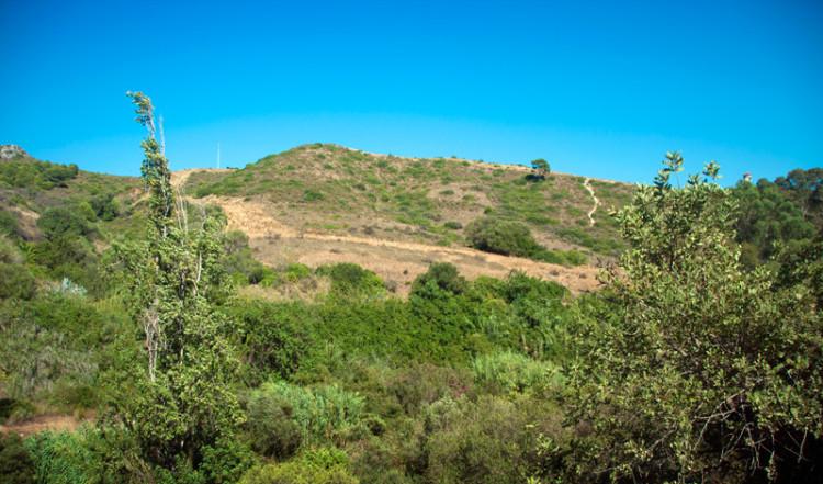 Andalusiska landskap