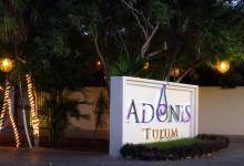 Adonis, Tulum