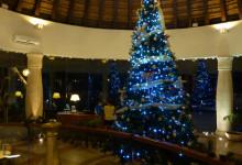 Vacker julgran i lobbyn på Adonis