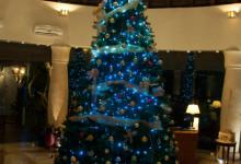 Julkänsla i Lobbyn på Adonis Tulum