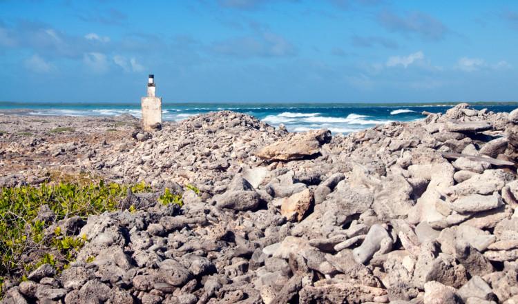Karg kuststräcka, Bonaire