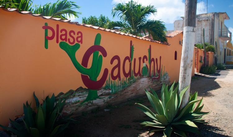 Plasa Cadushy i Rincon, Bonaire