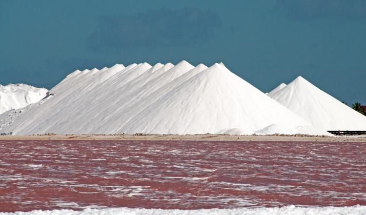 Rosa vatten vid saltproduktionen, Bonaire