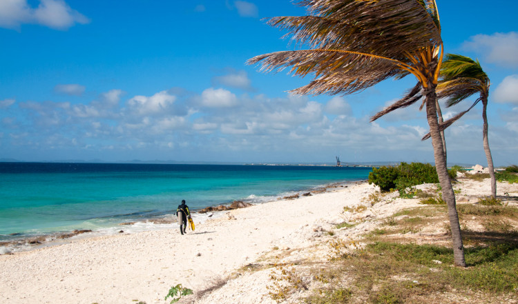 Pink beach, Bonaire