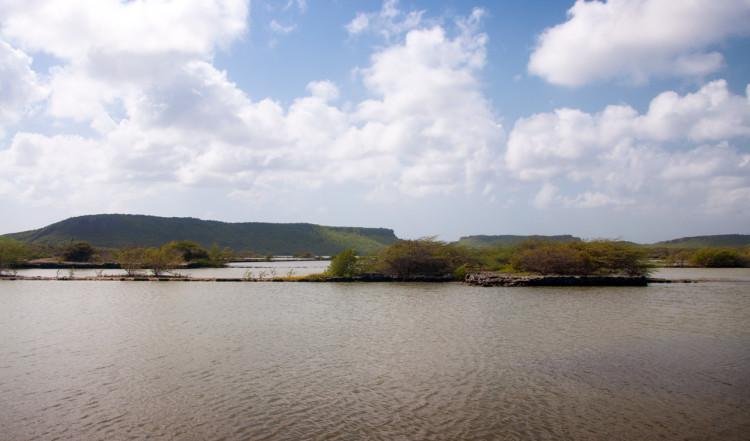 Ett av flera ställen att spana in Flamingos på Curaçao