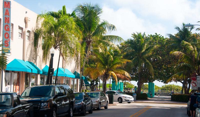 Gata i South Beach, Miami