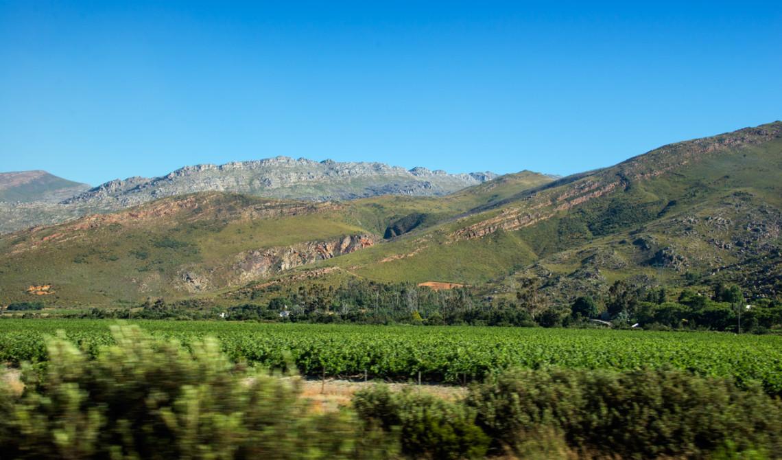 Vackra vyer i vindistrikten runt Stellenbosch