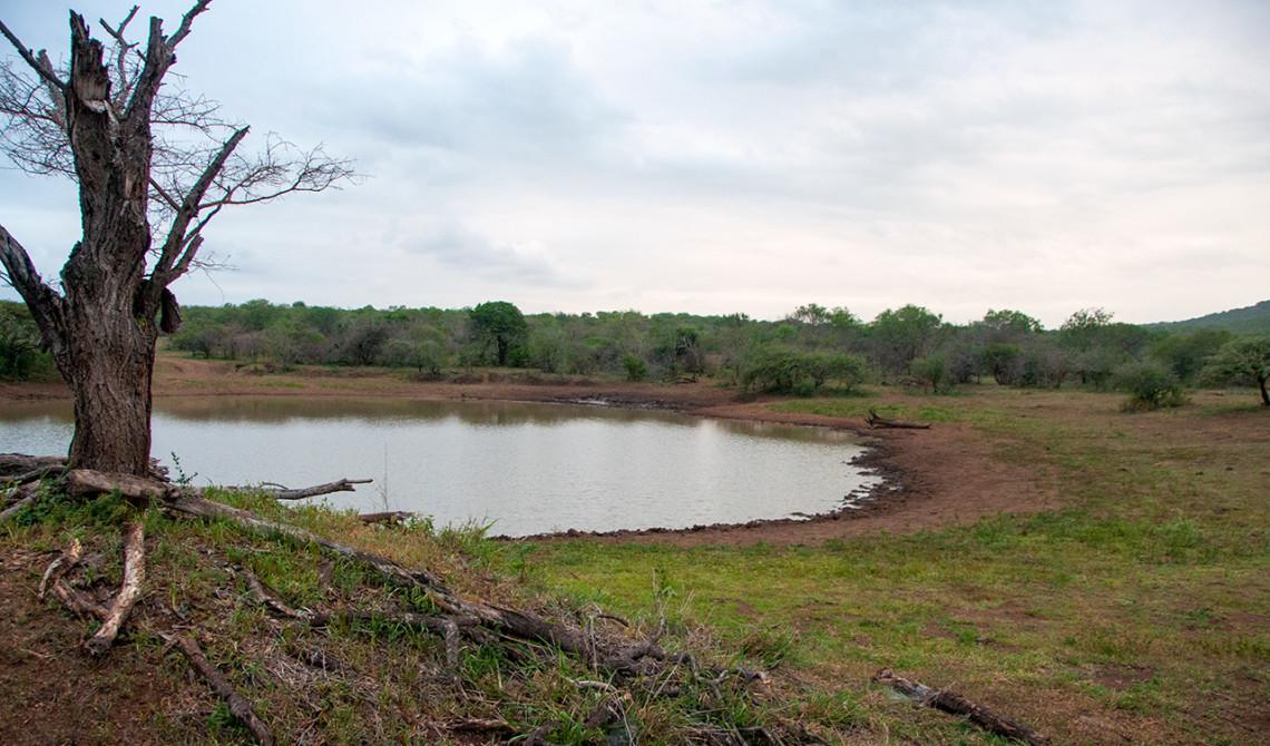 Vi stannar till, sträcker på benen och tar ett glas vid denna vackra plats - Thanda Private Game Reserve