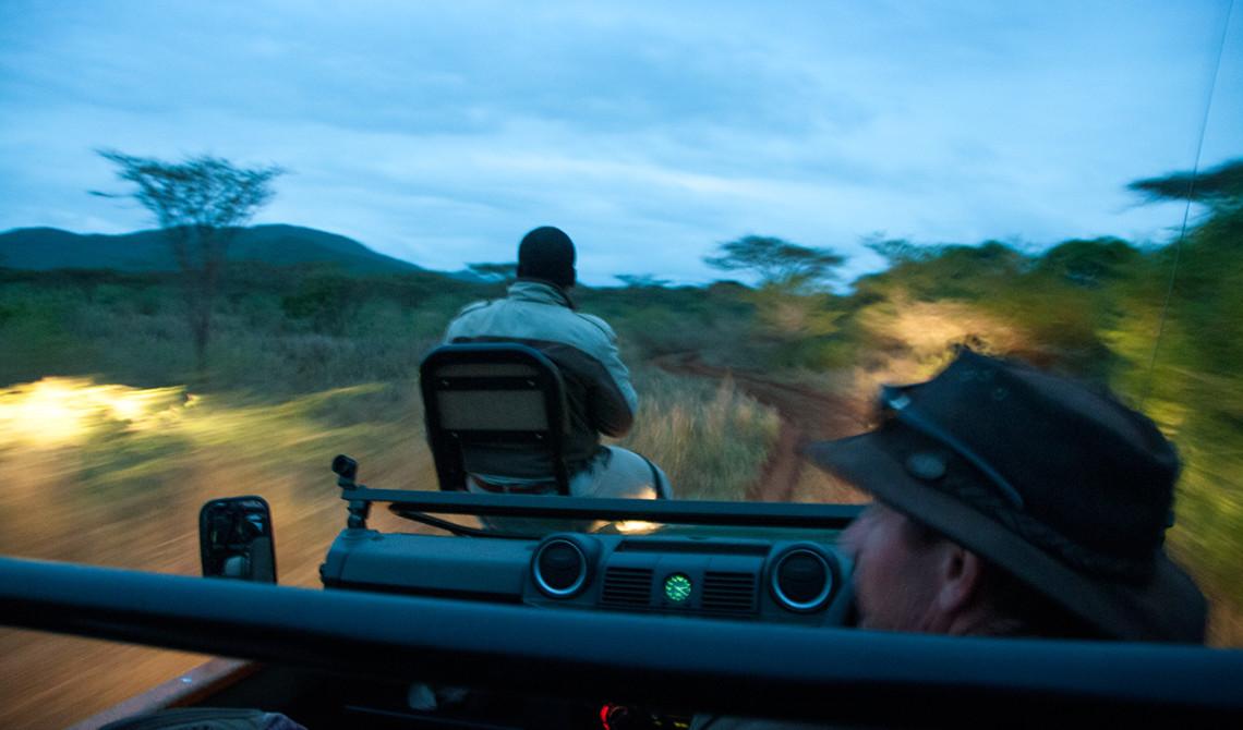 Ljuset har lagt sig över Thanda Private Game Reserve