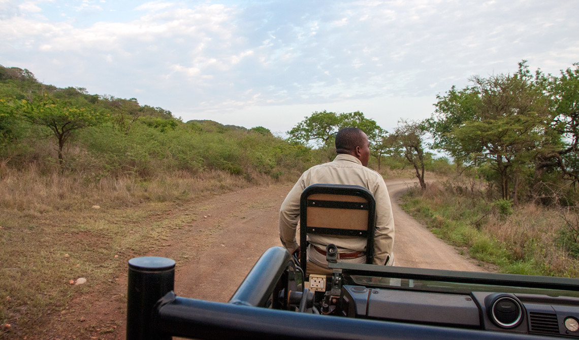 Vid 5.30 på morgonen åker vi ut på dagens första game drive, Thanda Private Game Reserve
