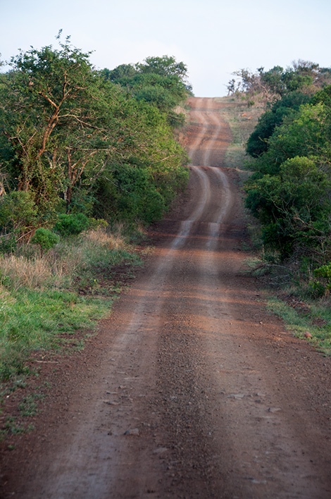 Väg vi färdas på under vår game drive, Thanda Private Game Reserve