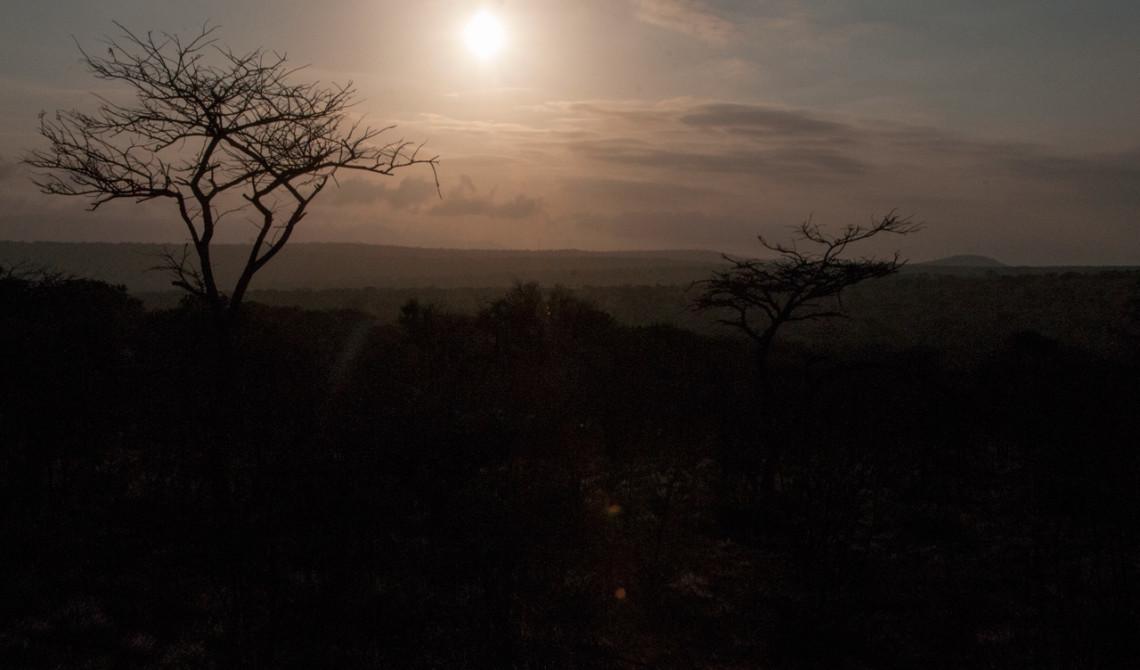 Vacker gryning under vjår morgontur, Mavela Game Lodge