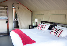 Tält på Mavela Game Lodge