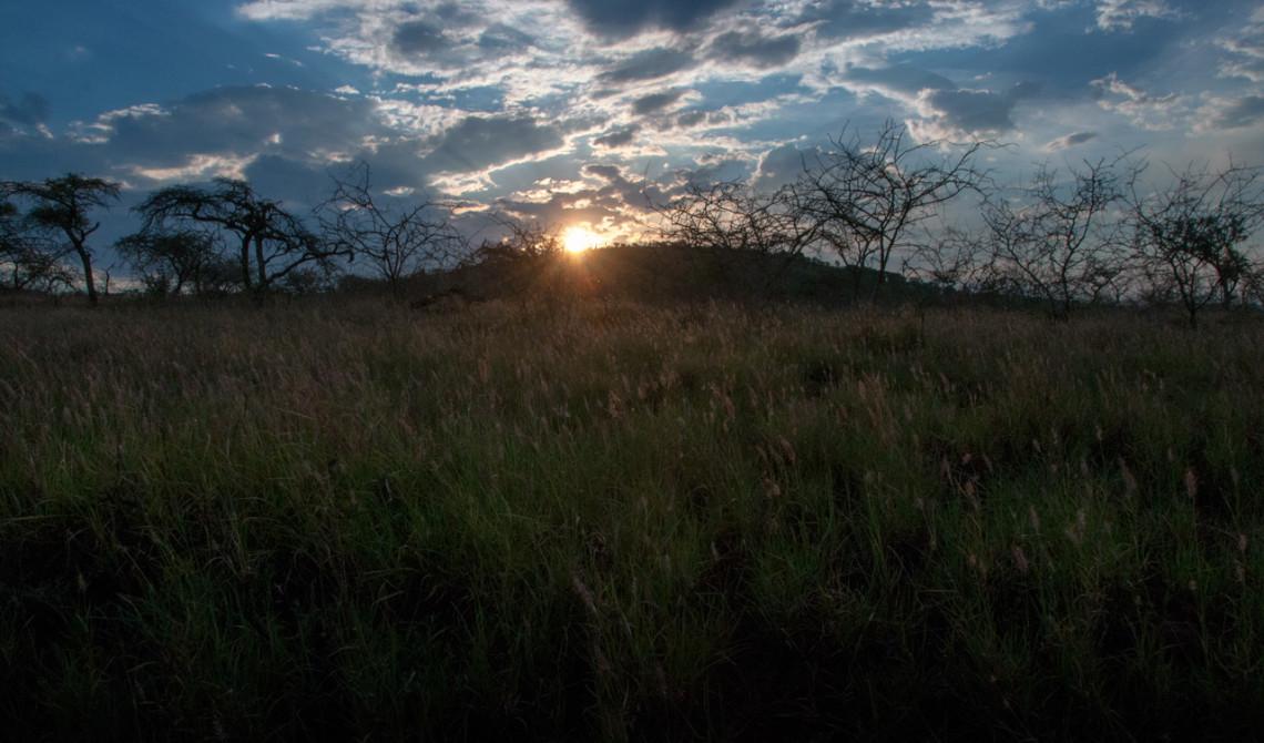 Vacker solnedgång över Mavela Game Lodge