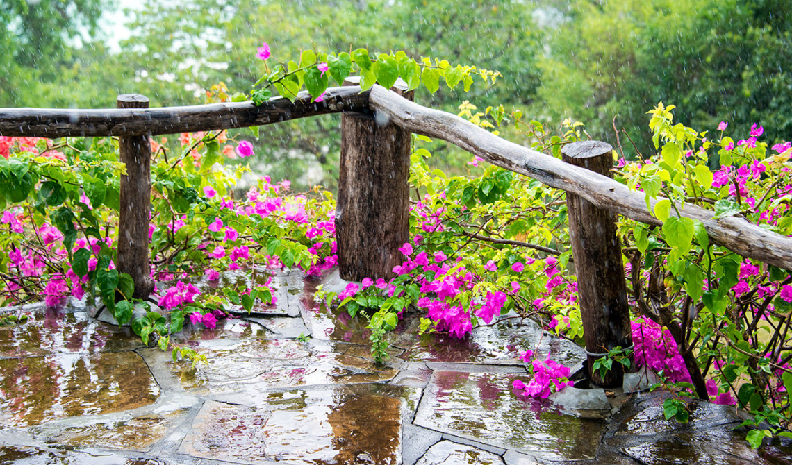 Regnet öser ner över terassen till Manta Resort