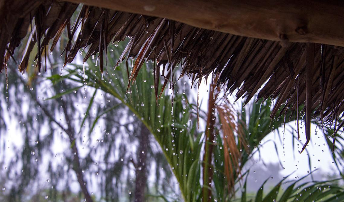 Tropiska öar behöver regn - Regn över Pemba,
