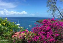 Underbara färger runt om en, Ti Kaye Resort & Spa, Saint Lucia