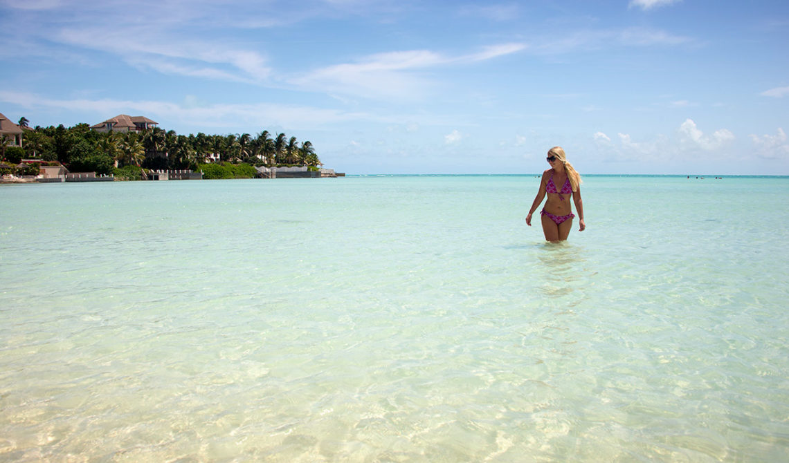 Anki i klart turkosblått vatten på underbara stranden Taylor Bay Beach på Turks & Caicos