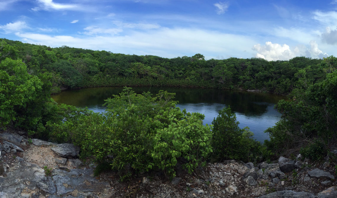 Cottage Pont på North Caicos, Turks & Caicos