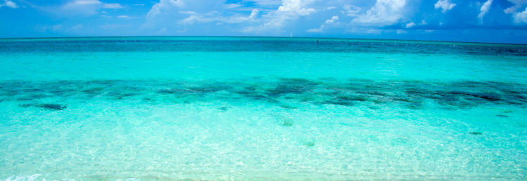 Top - Crystal Clear Ocean View, Turks & Caicos