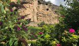 Vackert med färgstarka växter och blommor bland de gamla stenmurarna i gamla stan i Luxemburg