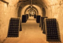 På guidad tur i Taittinger champagnehus i Reims