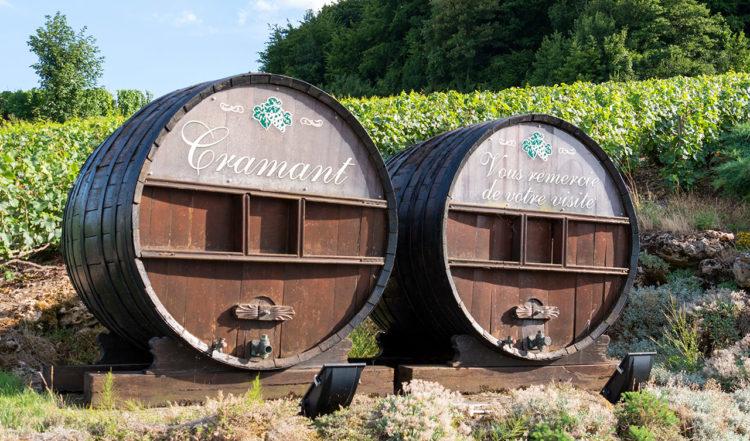 I champagne distriktet Cramant i Frankrike