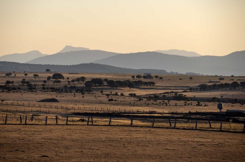 Driving from Salamanca to Merida in the early evening, Spain