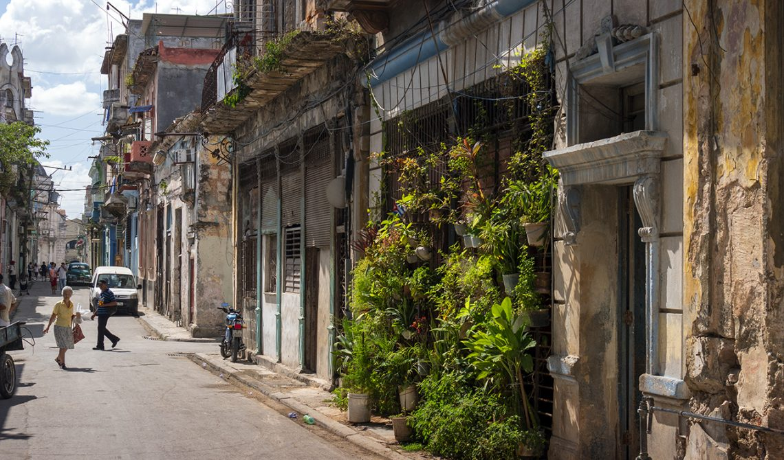 Charmigt hus med gröna växter i de gamla stadsdelarna i Havanna