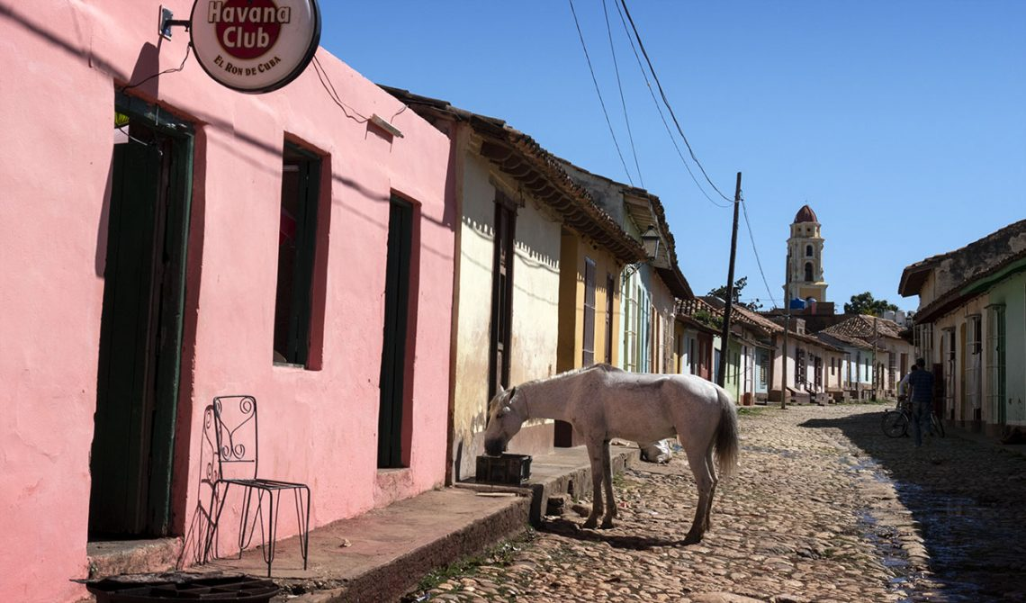 Horse outside a pink house in Trinidad